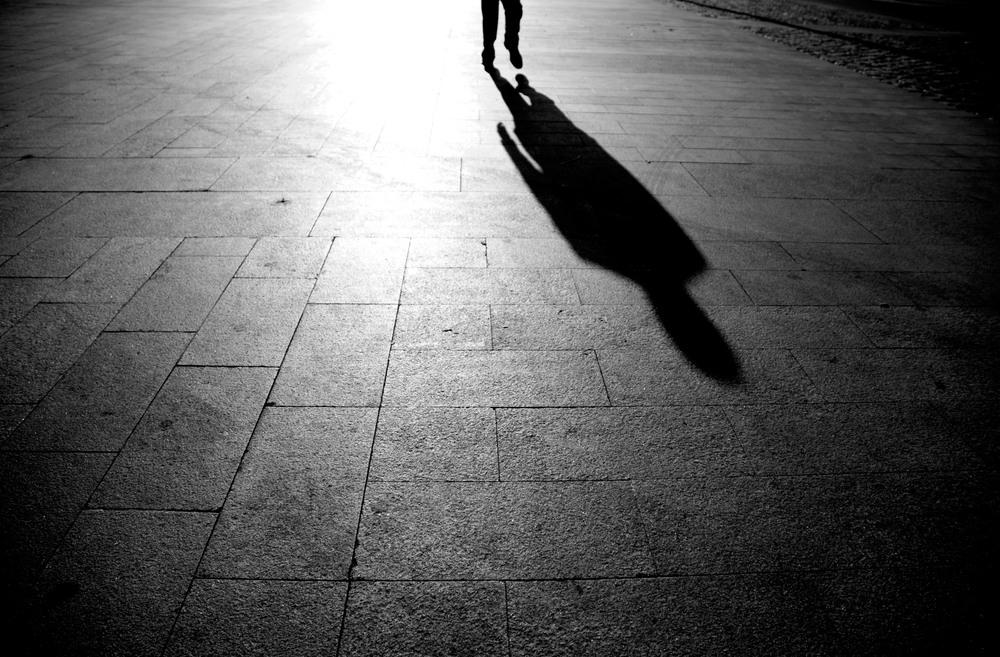 Resultado de imagen de la sombra